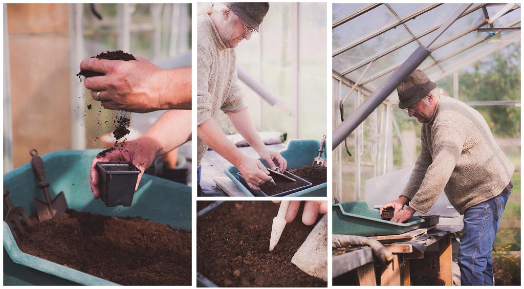 Planting Chilli seeds at Culmstock Chilli Company, environmental portraits