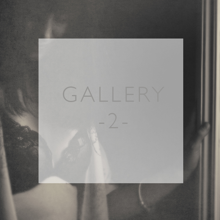 Gallery2_SquareButtons748px copy