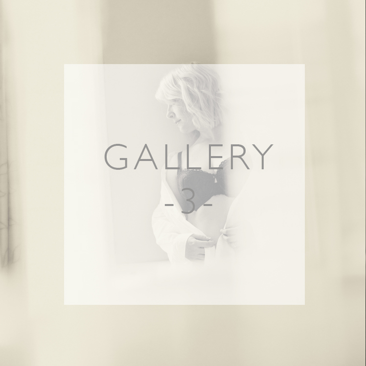 Gallery3_SquareButtons748px copy