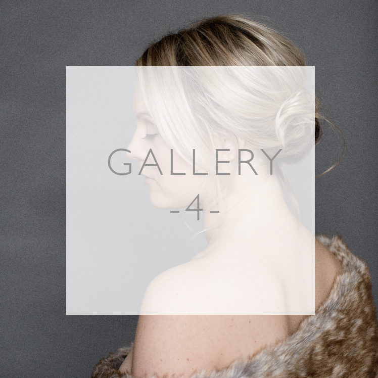 Gallery4_SquareButtons748px copy