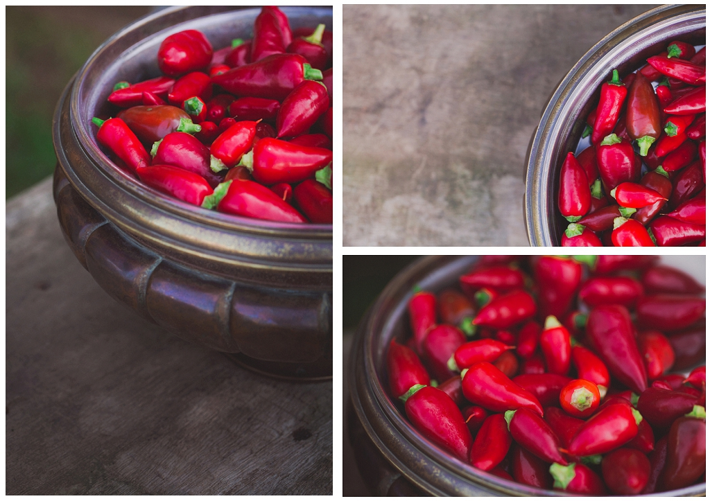 Red chillis in a bowl, product shot