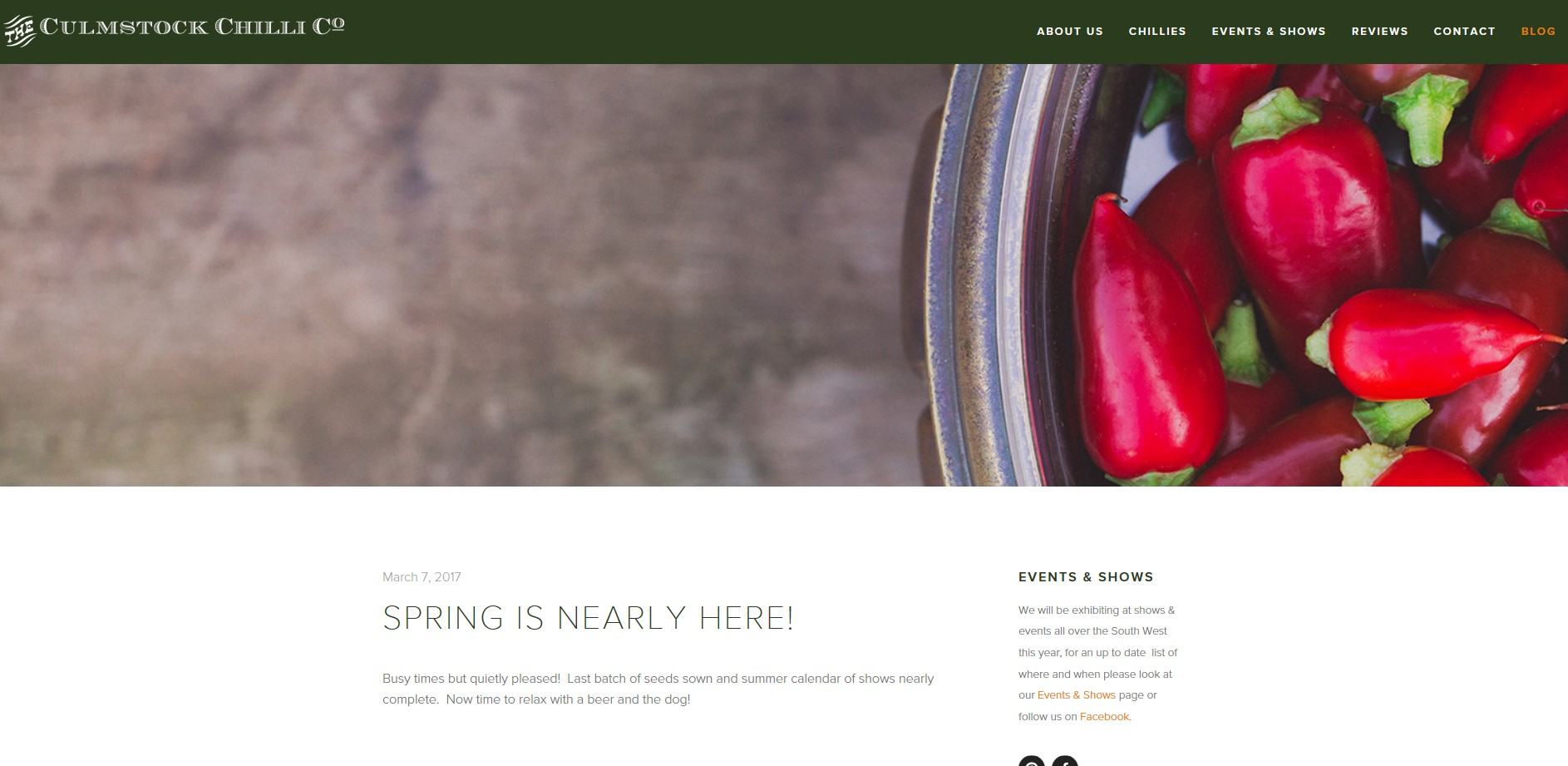 Screen shot of the Blog page on the Culmstock Chilli Co Website, commercial shoot by Perspectives Photography