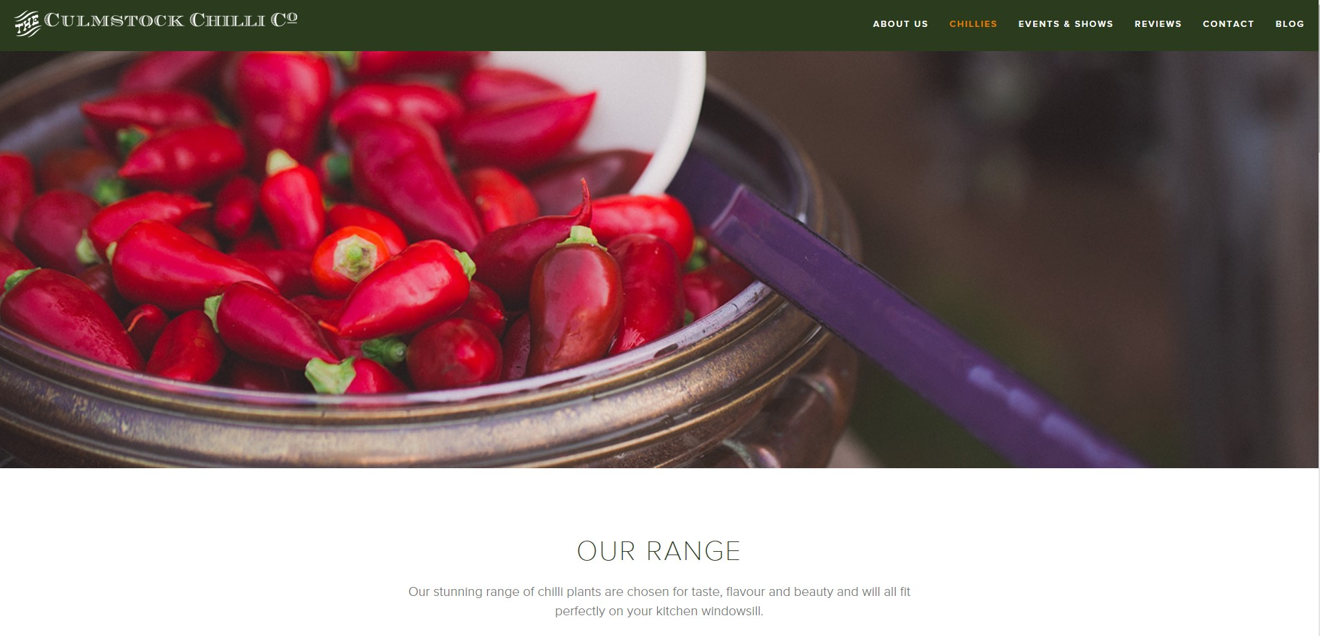 Screenshot of a bowl of chillis for the Cumlstock Chilli Co website